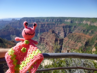 annie-the-alien-at-the-grand-canyon-north-rim