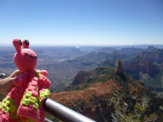 annie-the-alien-enjoys-the-views-of-the-grand-canyon