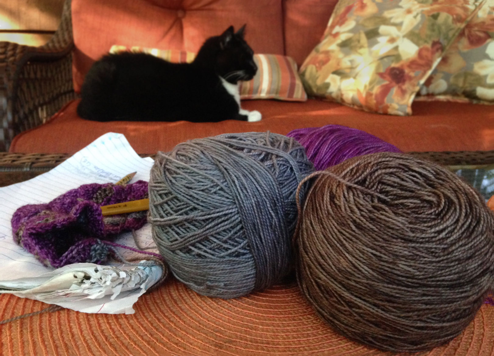 Yarn and crocheting with cat on porch to calm the mind and renew the spirit.